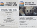 flyer neu gross